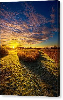 Decisions Canvas Print by Phil Koch