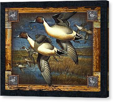 Deco Pintail Ducks Canvas Print by JQ Licensing