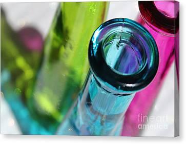 Decorative Bottles Iv Canvas Print by Krissy Katsimbras