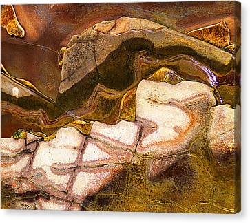 Decorative Rock At Crystal Cove Canvas Print by Ron Regalado