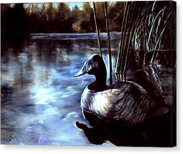 Decoy At Tealwood Canvas Print by Pattie Wall