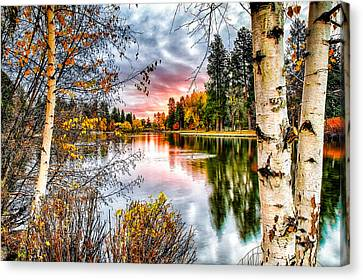 Deep Autumn Canvas Print by John Williams