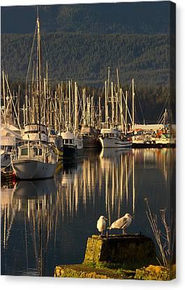 Deep Bay Canvas Print by Randy Hall