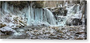 Deep Freeze Canvas Print by Lori Deiter