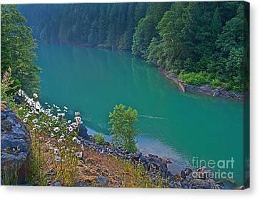 Deep Green River Near Ross Lake Washington In Forest Canvas Print by Valerie Garner