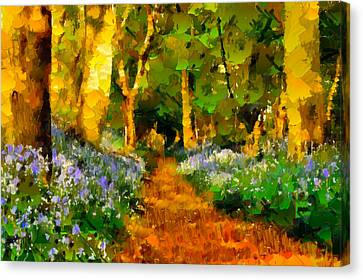 Deep In A Forest Canvas Print by Georgiana Romanovna