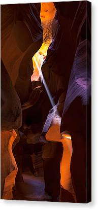 Deep In Antelope Canvas Print
