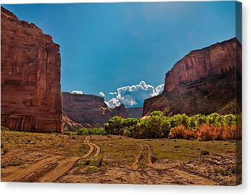 Deep In Canyon De Chelly Canvas Print by Bob and Nadine Johnston