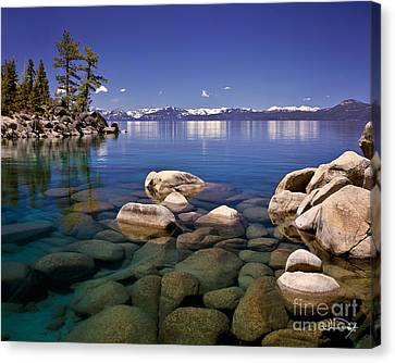 Snow Landscape Canvas Print - Deep Looks by Vance Fox