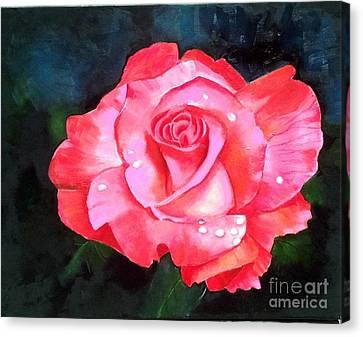 Deep Pink Rose Canvas Print