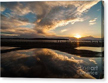 Deep Pool Of Sunset Light Canvas Print