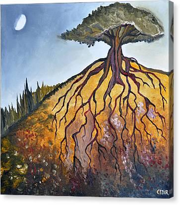 Deep Roots Canvas Print by Cedar Lee