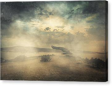 Deep Sleep Canvas Print by Taylan Apukovska