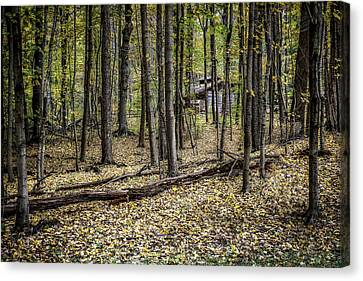 Deep Woods Cabin Canvas Print by Tom Mc Nemar