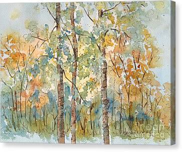 Deep Woods Waskesiu Canvas Print by Pat Katz