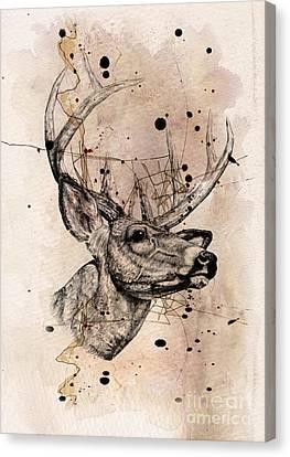 Deer 4 Canvas Print by Mark Ashkenazi