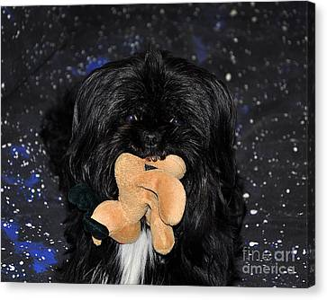 Deer Dog Canvas Print by Al Powell Photography USA