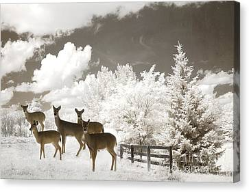 Deer Nature Winter - Surreal Nature Deer Winter Snow Landscape Canvas Print by Kathy Fornal
