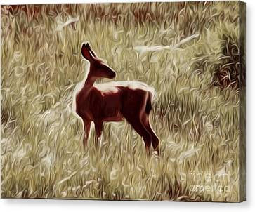 Deer On A Sunny Day Canvas Print
