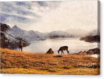 Deer On Mountain At Dusk Canvas Print