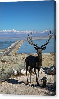 Deer Sculpture Canvas Print by Jim West