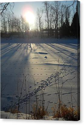 Deer Tracks On The River Canvas Print by Kent Lorentzen