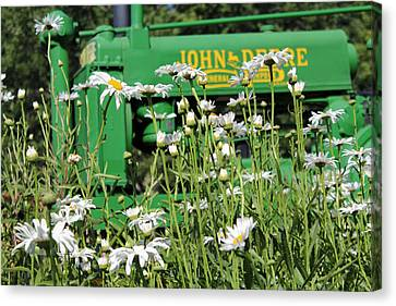 Canvas Print featuring the photograph Deere 1 by Lynn Sprowl