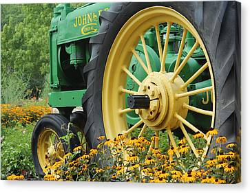 Canvas Print featuring the photograph Deere 2 by Lynn Sprowl