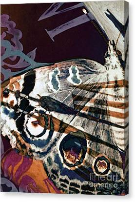 Defined Existence Canvas Print by Carole-Ann Ricketts