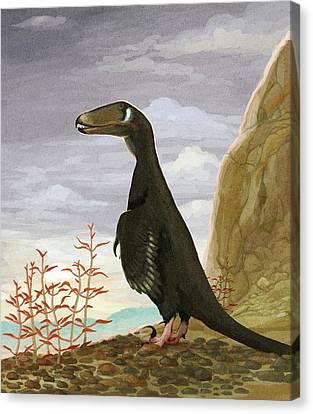 Deinonychus Dinosaur Canvas Print by Nemo Ramjet