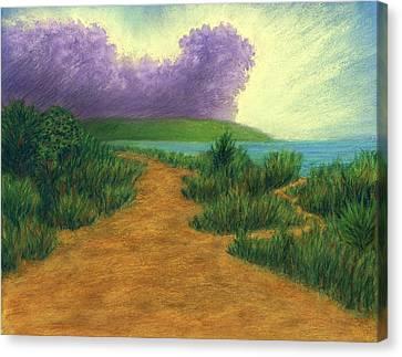 Del Mar Trails 03 Canvas Print