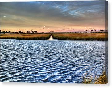 Delaware- Assawoman Bay Canvas Print by Tim Buisman