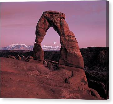 Delicate Arch Canvas Print by Leland D Howard
