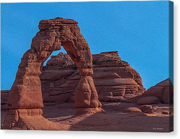 Delicate Arch Canvas Print by Tim Bryan
