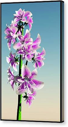 Delicate Flower... Canvas Print by Tim Fillingim