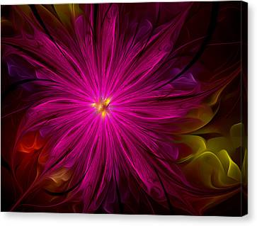 Delicate Flowers Canvas Print by Radoslav Nedelchev