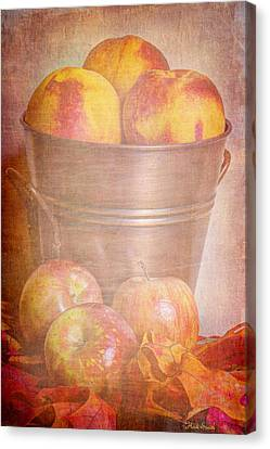 Delicious  Canvas Print by Heidi Smith