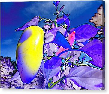 Canvas Print featuring the digital art Delight by Mike Breau