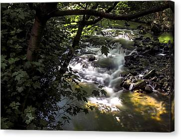 Dell Canvas Print by Ross G Strachan