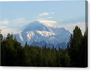 Denali A Closer Look Canvas Print