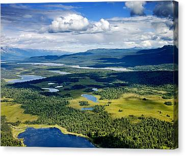 Denali Alpine Lakes And Forest Canvas Print by Carol Highsmith