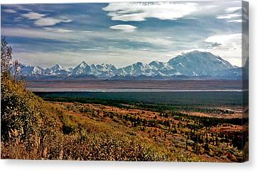 Canvas Print featuring the photograph Denali Colors by Jeremy Rhoades