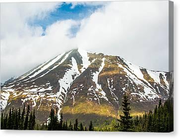 Denali Mountain Canvas Print
