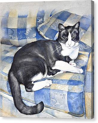Canvas Print featuring the painting Denise's Cat by Sandra Phryce-Jones