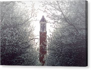 Denny Chimes Foggy Blossoms Canvas Print