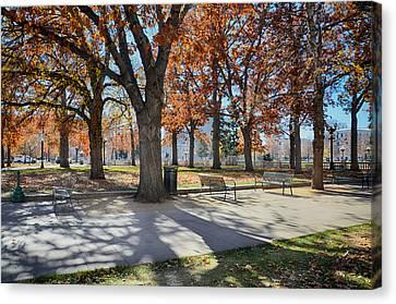Denver Park In November Canvas Print