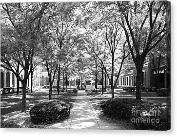 Big East Conference Canvas Print - Depaul University Richardson Library Courtyard by University Icons