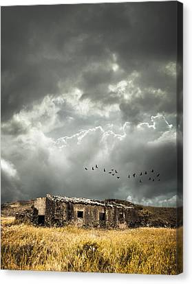 Derelict Rural Building Canvas Print by Amanda Elwell