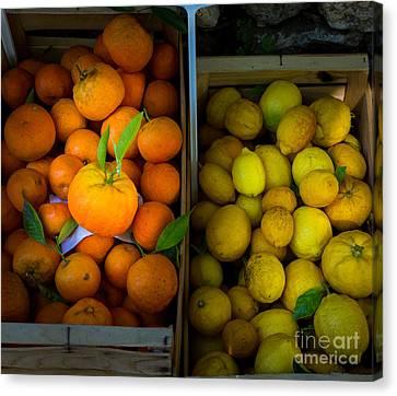 Des Oranges Et Des Citrons Canvas Print by Inge Johnsson