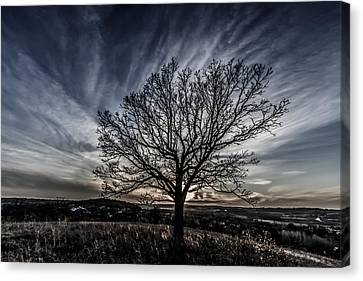 Desaturated Sunset Canvas Print by Randy Scherkenbach